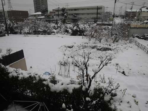 雪の朝3.jpg