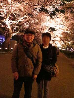 高田夜桜2.jpg